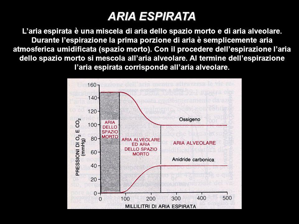 ARIA ESPIRATA Laria espirata è una miscela di aria dello spazio morto e di aria alveolare. Durante lespirazione la prima porzione di aria è sempliceme