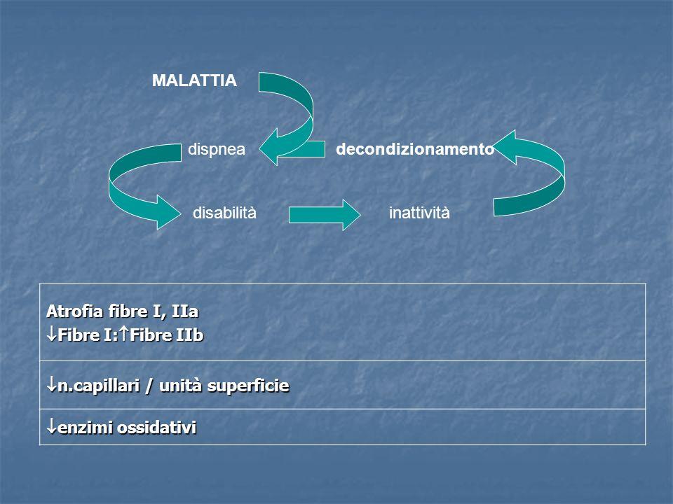 Atrofia fibre I, IIa Fibre I: Fibre IIb Fibre I: Fibre IIb n.capillari / unità superficie n.capillari / unità superficie enzimi ossidativi enzimi ossi