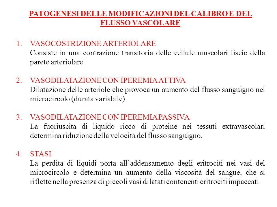 PATOGENESI DELLE MODIFICAZIONI DEL CALIBRO E DEL FLUSSO VASCOLARE 1.VASOCOSTRIZIONE ARTERIOLARE Consiste in una contrazione transitoria delle cellule