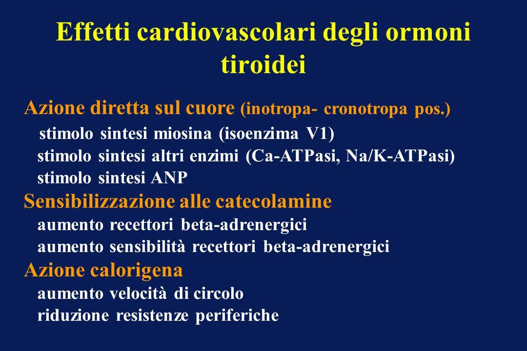 Effetti cardiovascolari degli ormoni tiroidei Azione diretta sul cuore (inotropa- cronotropa pos.) stimolo sintesi miosina (isoenzima V1) stimolo sint