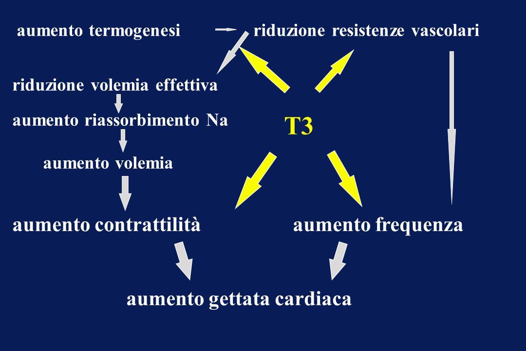 T3 aumento contrattilitàaumento frequenza aumento gettata cardiaca aumento termogenesiriduzione resistenze vascolari riduzione volemia effettiva aumen