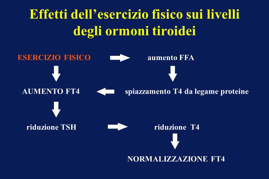 Effetti dellesercizio fisico sui livelli degli ormoni tiroidei ESERCIZIO FISICO AUMENTO FT4 aumento FFA spiazzamento T4 da legame proteine riduzione T