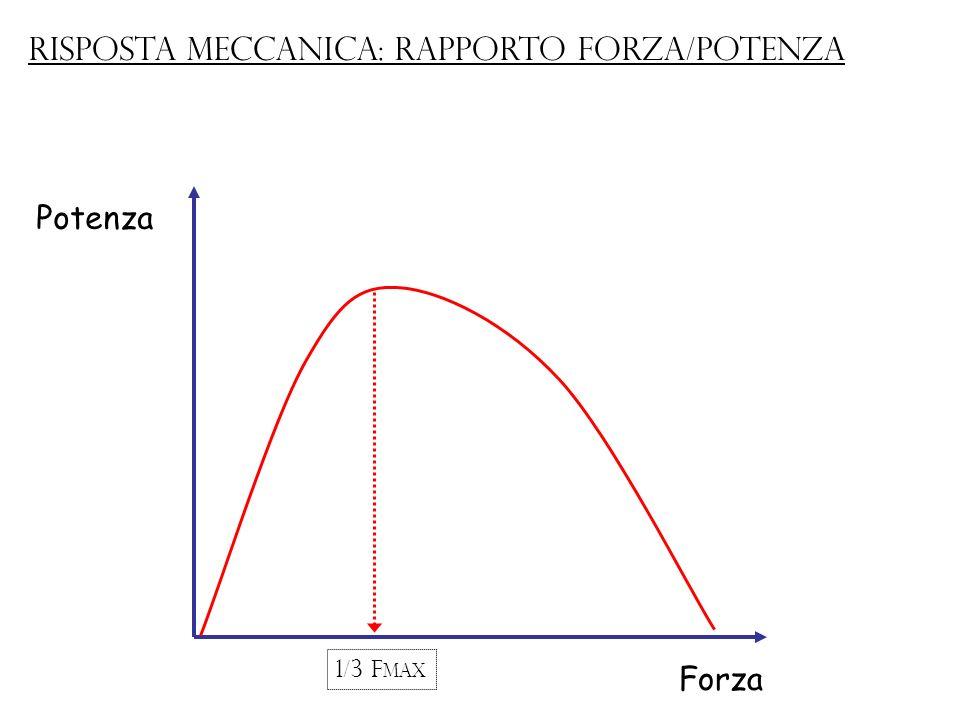 Potenza Forza Risposta meccanica: rapporto forza/potenza 1/3 F max