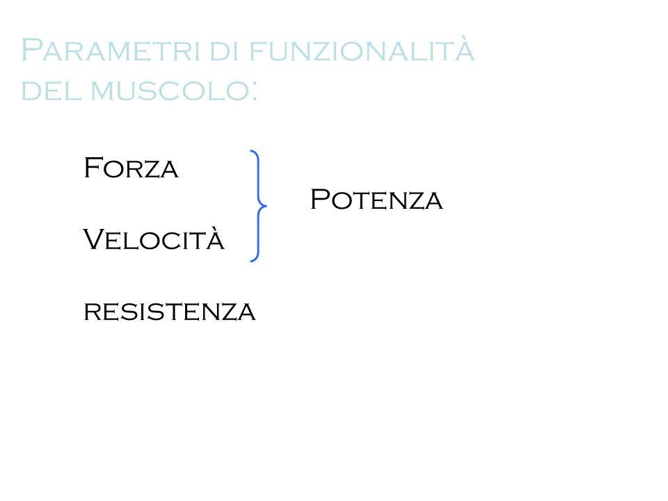 Parametri di funzionalità del muscolo: Forza Velocità resistenza Potenza