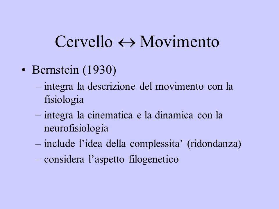 Cervello Movimento Bernstein (1930) –integra la descrizione del movimento con la fisiologia –integra la cinematica e la dinamica con la neurofisiologi