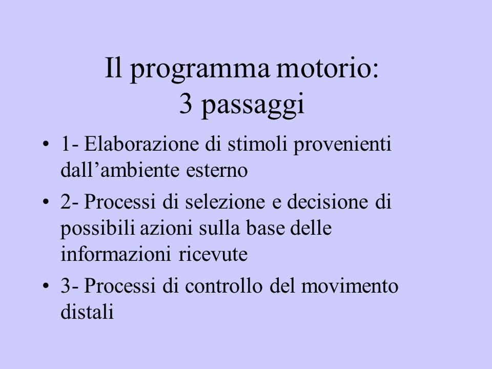 Il programma motorio: 3 passaggi 1- Elaborazione di stimoli provenienti dallambiente esterno 2- Processi di selezione e decisione di possibili azioni