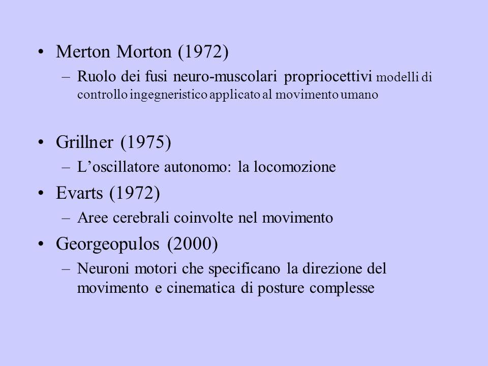 Merton Morton (1972) –Ruolo dei fusi neuro-muscolari propriocettivi modelli di controllo ingegneristico applicato al movimento umano Grillner (1975) –