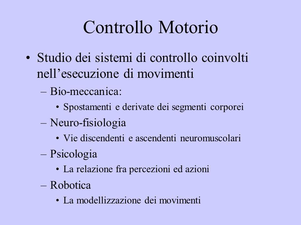 Controllo Motorio Studio dei sistemi di controllo coinvolti nellesecuzione di movimenti –Bio-meccanica: Spostamenti e derivate dei segmenti corporei –