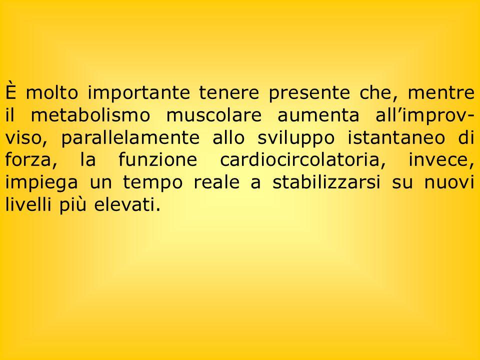 È molto importante tenere presente che, mentre il metabolismo muscolare aumenta allimprov- viso, parallelamente allo sviluppo istantaneo di forza, la
