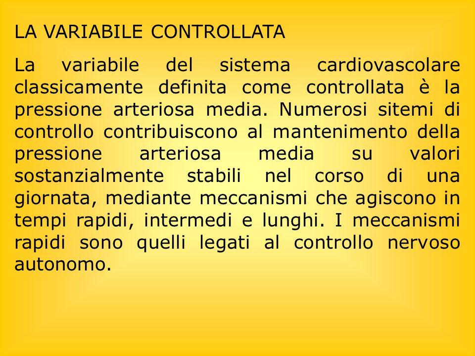 LA VARIABILE CONTROLLATA La variabile del sistema cardiovascolare classicamente definita come controllata è la pressione arteriosa media. Numerosi sit