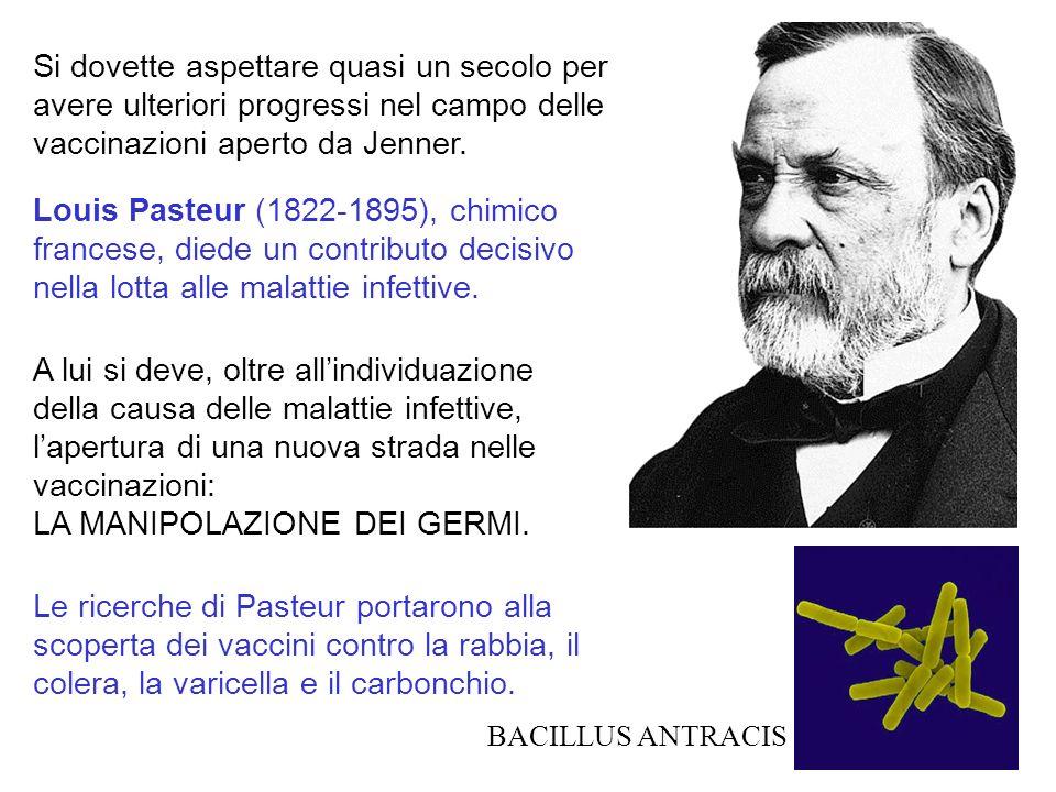 Si dovette aspettare quasi un secolo per avere ulteriori progressi nel campo delle vaccinazioni aperto da Jenner. Louis Pasteur (1822-1895), chimico f