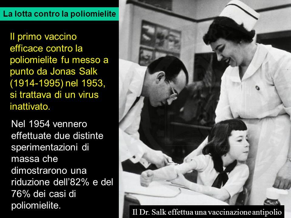 La lotta contro la poliomielite Il Dr. Salk effettua una vaccinazione antipolio Il primo vaccino efficace contro la poliomielite fu messo a punto da J