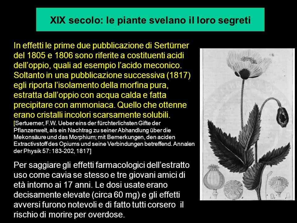 XIX secolo: le piante svelano il loro segreti In effetti le prime due pubblicazione di Sertürner del 1805 e 1806 sono riferite a costituenti acidi del
