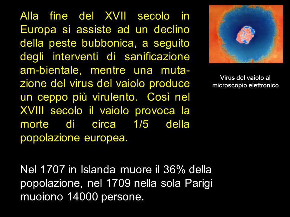 Alla fine del XVII secolo in Europa si assiste ad un declino della peste bubbonica, a seguito degli interventi di sanificazione am-bientale, mentre un