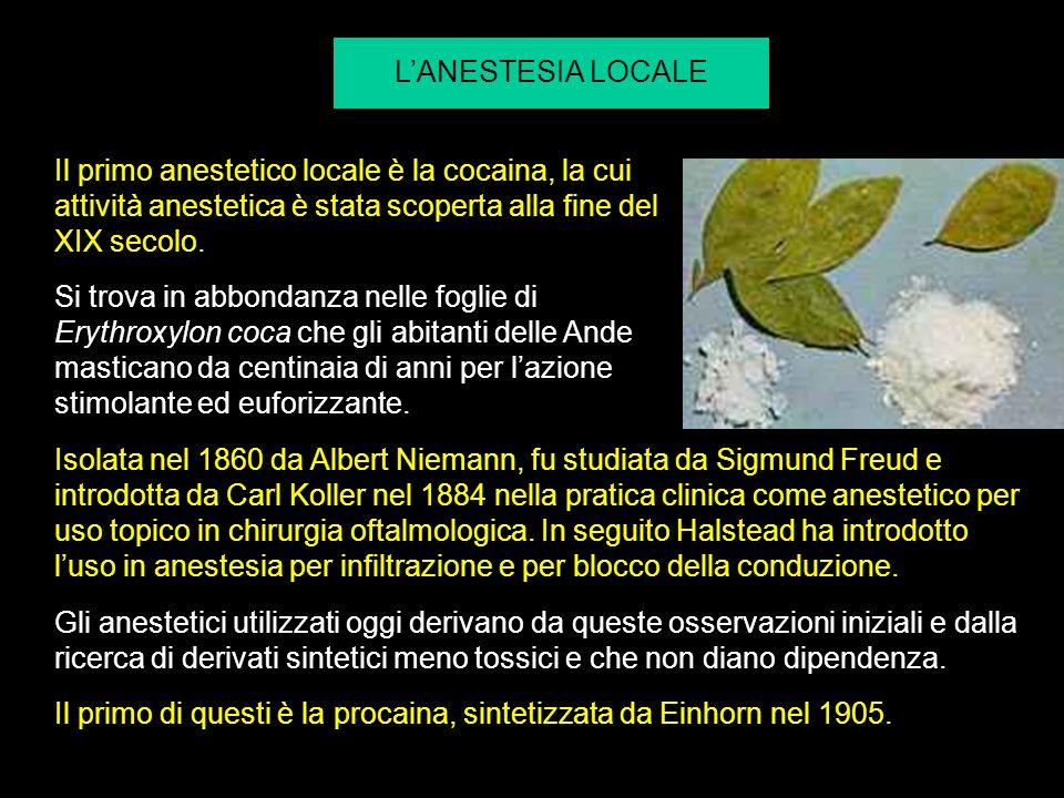 LANESTESIA LOCALE Il primo anestetico locale è la cocaina, la cui attività anestetica è stata scoperta alla fine del XIX secolo. Si trova in abbondanz