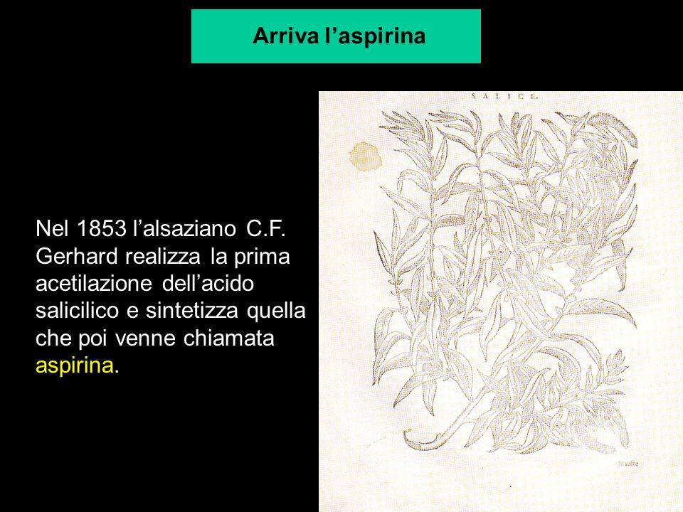 Nel 1853 lalsaziano C.F. Gerhard realizza la prima acetilazione dellacido salicilico e sintetizza quella che poi venne chiamata aspirina. Arriva laspi