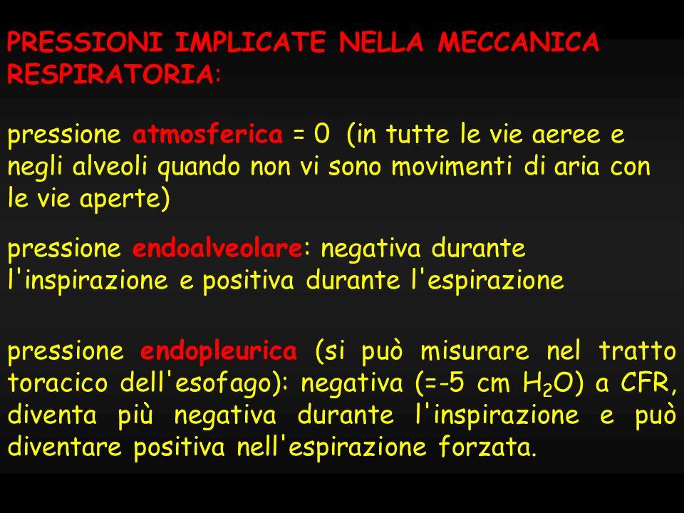 -8 -6 -4 -2 0 2 4 6 8 palvpplvol inspirazioneespirazione Pressione pleurica Pressione alveolare