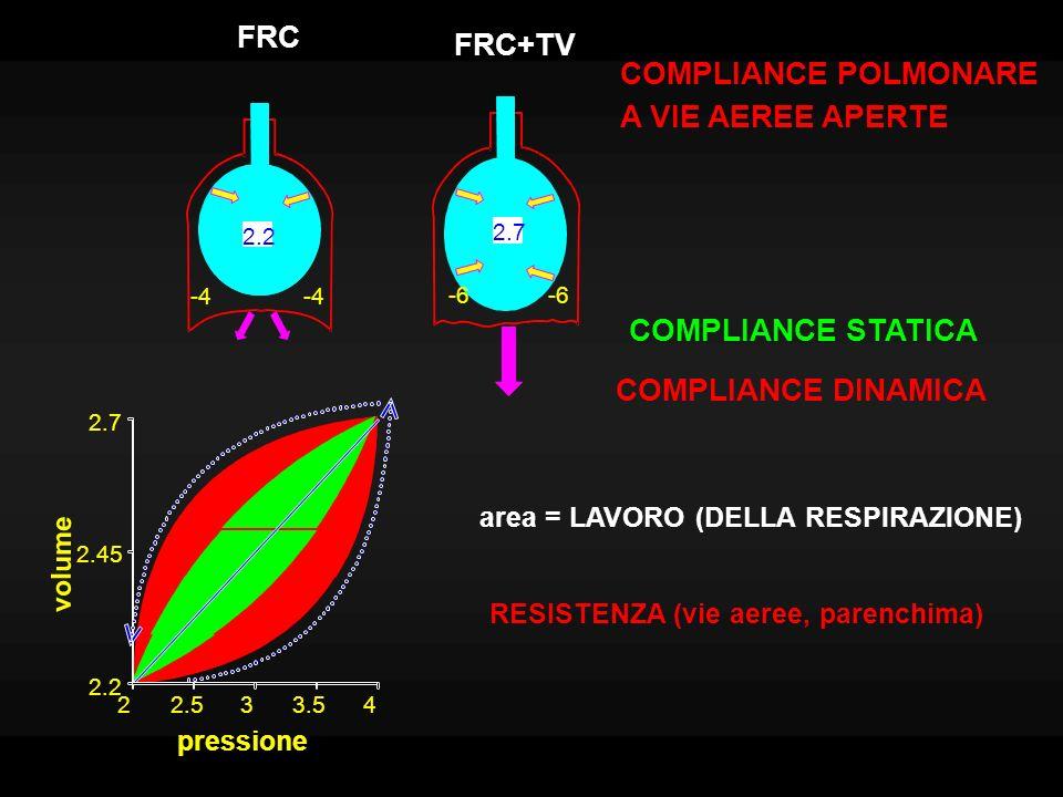 spazio morto fisiologico: comprende eventuali alveoli ventilati ma non perfusi dal sangue (Rapporto ventilazione/perfusione > 1) VENTILAZIONE POLMONARE (0.5*12=6 l/m) = VC * frequenza respiratoria VENTILAZIONE ALVEOLARE: (0.35*12=4.2 l/m): non comprende il volume dello spazio morto (150 ml).