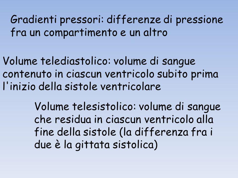 Gradienti pressori: differenze di pressione fra un compartimento e un altro Volume telediastolico: volume di sangue contenuto in ciascun ventricolo subito prima l inizio della sistole ventricolare Volume telesistolico: volume di sangue che residua in ciascun ventricolo alla fine della sistole (la differenza fra i due è la gittata sistolica)