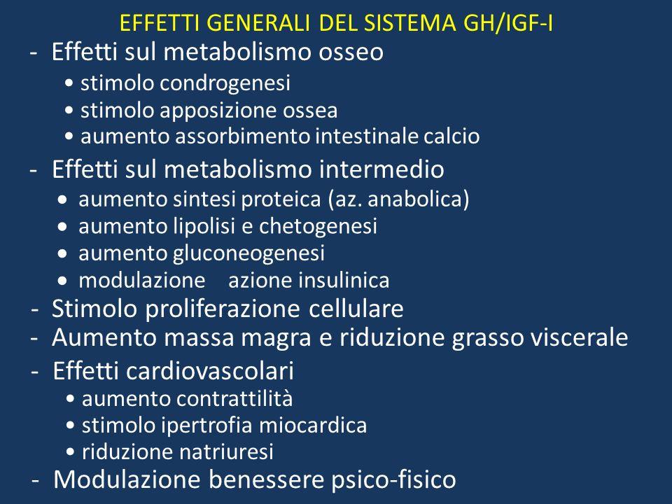 Effetti dellOrmone della Crescita Stimola la crescita di tutti i tessuti del corpo capaci di crescere Stimola la produzione di IGF-1 (Insulin-like gro
