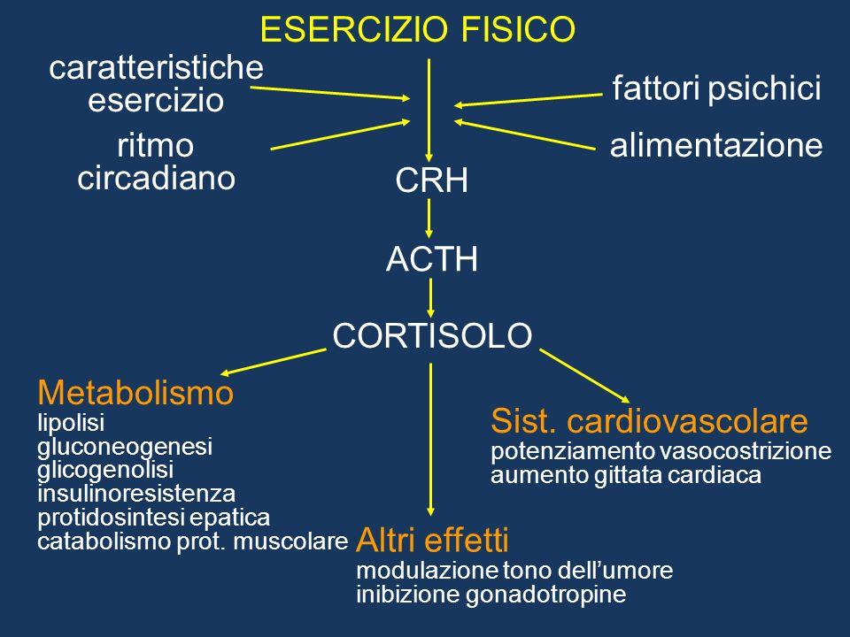 Effetti metabolici del GH Effetto acuto (<2h) - azione insulinosimile Effetti cronici - stimolo sintesi proteica - stimolo gluconeogenesi epatica - inibizione utilizzazione periferica del glucosio - stimolo lipolisi