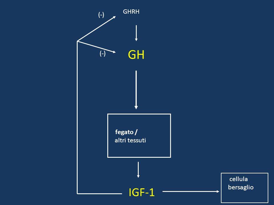 ACTH: effetti Aumento dei livelli di cortisolo Aumento della glicemia Lieve aumento della soglia della fatica Le prestazioni non subiscono, però, prog