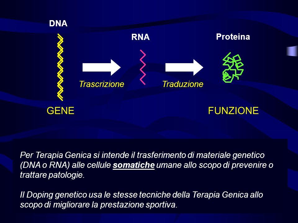Per Terapia Genica si intende il trasferimento di materiale genetico (DNA o RNA) alle cellule somatiche umane allo scopo di prevenire o trattare patol