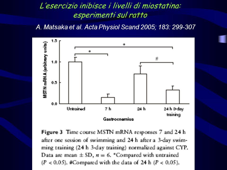 A. Matsaka et al. Acta Physiol Scand 2005; 183: 299-307 Lesercizio inibisce i livelli di miostatina: esperimenti sul ratto