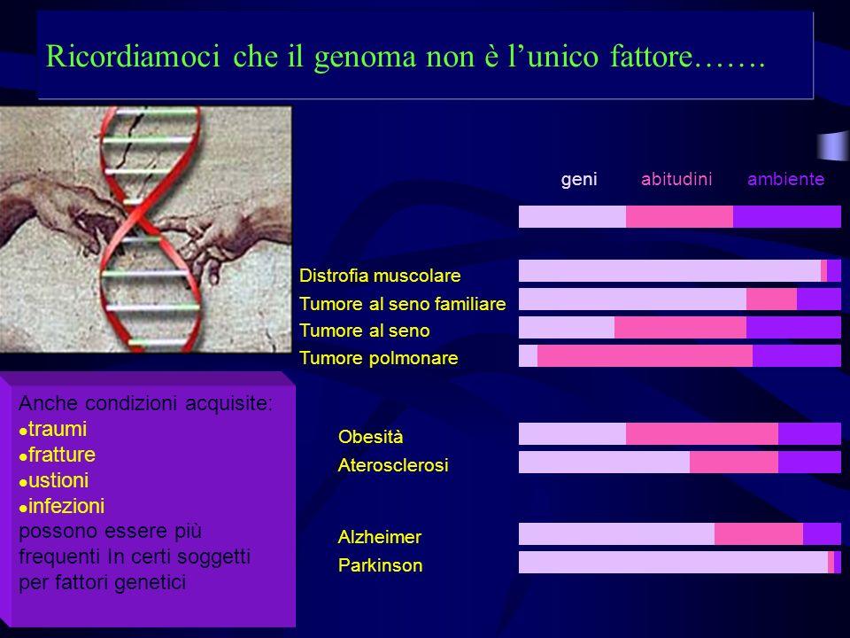 Ricordiamoci che il genoma non è lunico fattore……. geniabitudiniambiente Obesità Aterosclerosi Alzheimer Parkinson Distrofia muscolare Tumore al seno