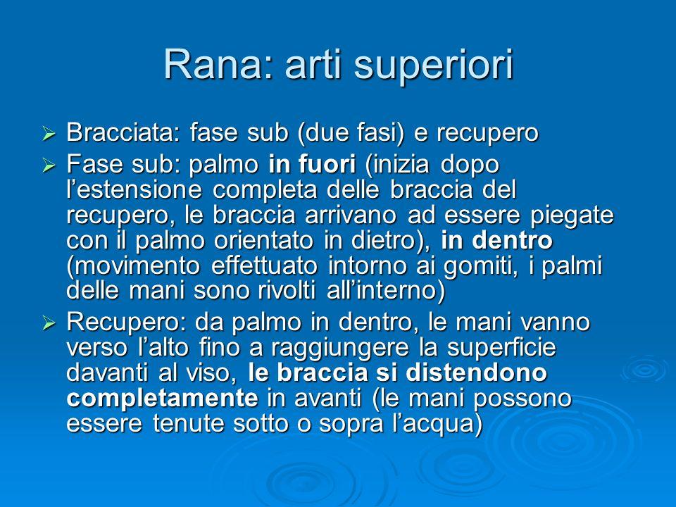 Rana: arti superiori Bracciata: fase sub (due fasi) e recupero Bracciata: fase sub (due fasi) e recupero Fase sub: palmo in fuori (inizia dopo lestens
