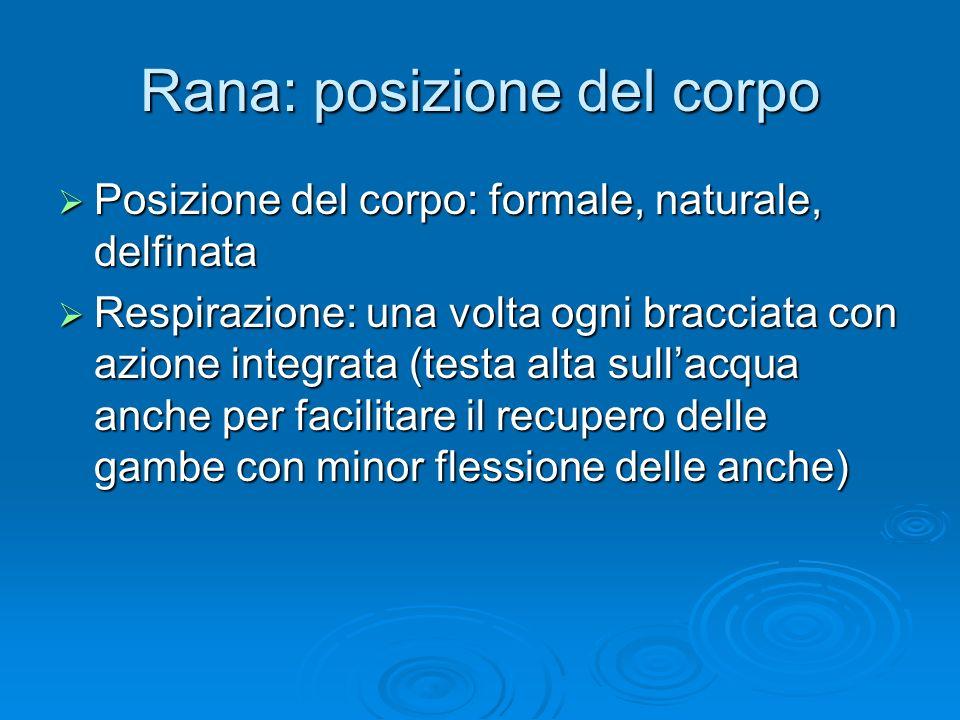 Rana: posizione del corpo Posizione del corpo: formale, naturale, delfinata Posizione del corpo: formale, naturale, delfinata Respirazione: una volta