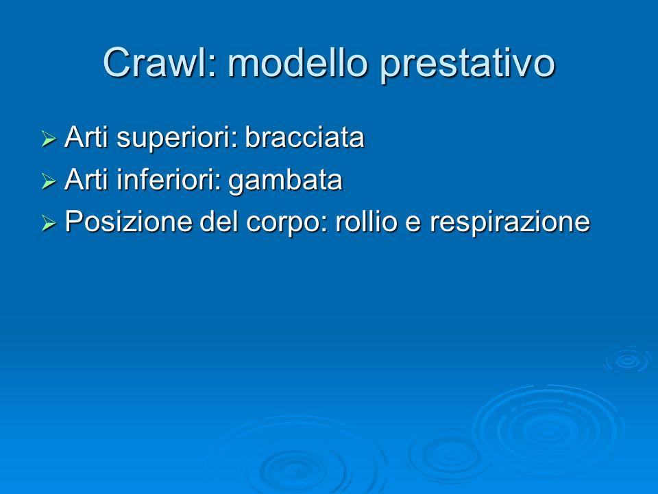Crawl: modello prestativo Arti superiori: bracciata Arti superiori: bracciata Arti inferiori: gambata Arti inferiori: gambata Posizione del corpo: rol