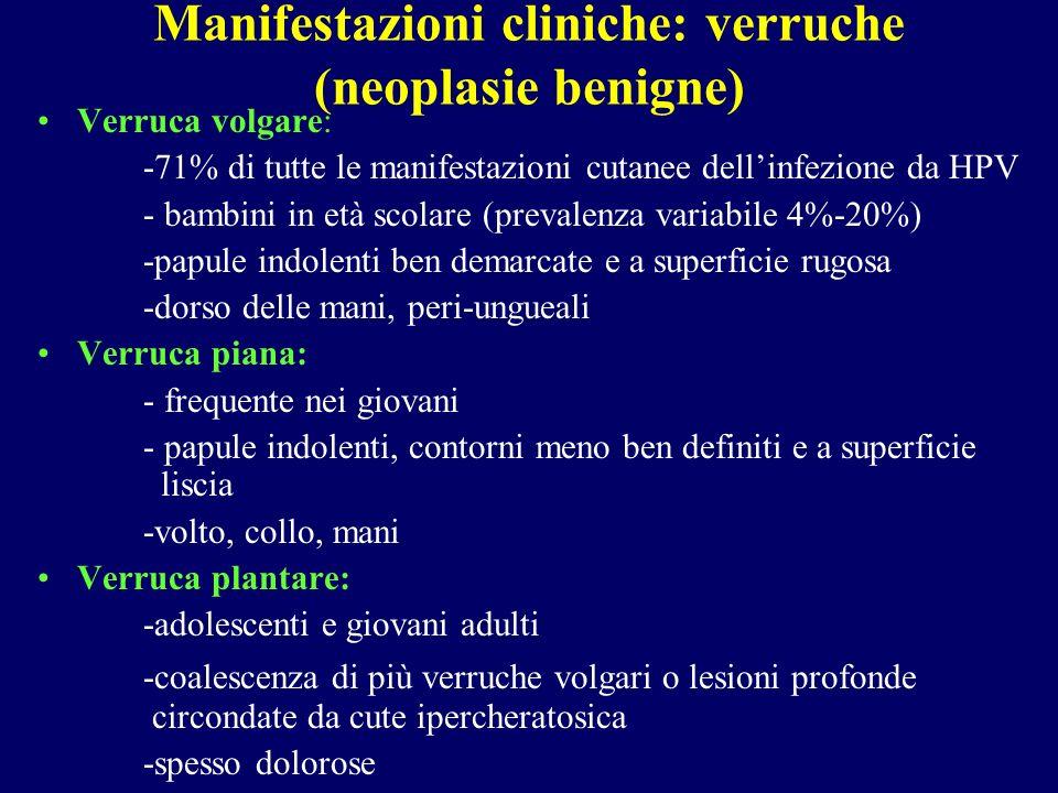 Manifestazioni cliniche: verruche (neoplasie benigne) Verruca volgare: -71% di tutte le manifestazioni cutanee dellinfezione da HPV - bambini in età scolare (prevalenza variabile 4%-20%) -papule indolenti ben demarcate e a superficie rugosa -dorso delle mani, peri-ungueali Verruca piana: - frequente nei giovani - papule indolenti, contorni meno ben definiti e a superficie liscia -volto, collo, mani Verruca plantare: -adolescenti e giovani adulti -coalescenza di più verruche volgari o lesioni profonde circondate da cute ipercheratosica -spesso dolorose