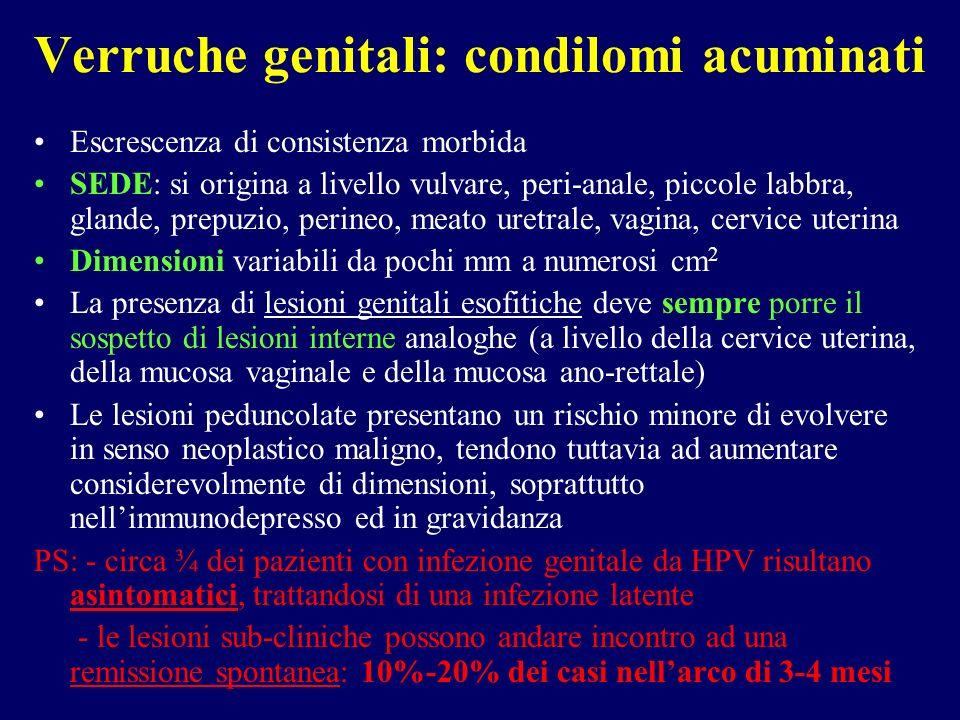 Escrescenza di consistenza morbida SEDE: si origina a livello vulvare, peri-anale, piccole labbra, glande, prepuzio, perineo, meato uretrale, vagina,