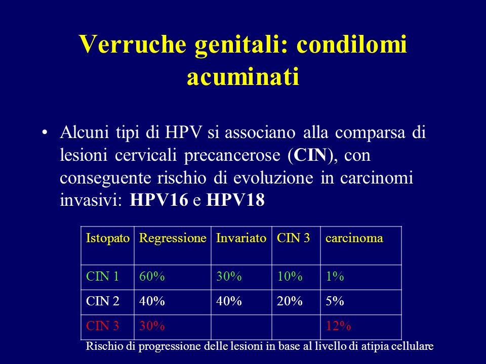 Verruche genitali: condilomi acuminati Alcuni tipi di HPV si associano alla comparsa di lesioni cervicali precancerose (CIN), con conseguente rischio