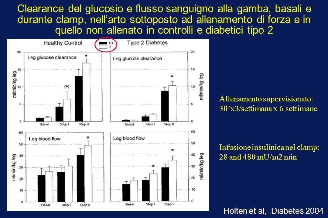 Clearance del glucosio e flusso sanguigno alla gamba, basali e durante clamp, nellarto sottoposto ad allenamento di forza e in quello non allenato in