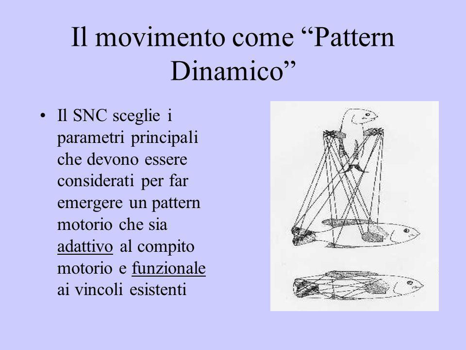 Il movimento come Pattern Dinamico Il SNC sceglie i parametri principali che devono essere considerati per far emergere un pattern motorio che sia ada