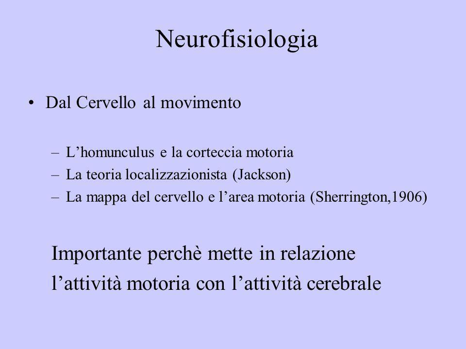 Dal Cervello al movimento –Lhomunculus e la corteccia motoria –La teoria localizzazionista (Jackson) –La mappa del cervello e larea motoria (Sherringt
