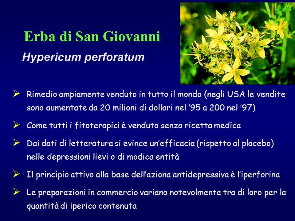Erba di San Giovanni Hypericum perforatum Rimedio ampiamente venduto in tutto il mondo (negli USA le vendite sono aumentate da 20 milioni di dollari n