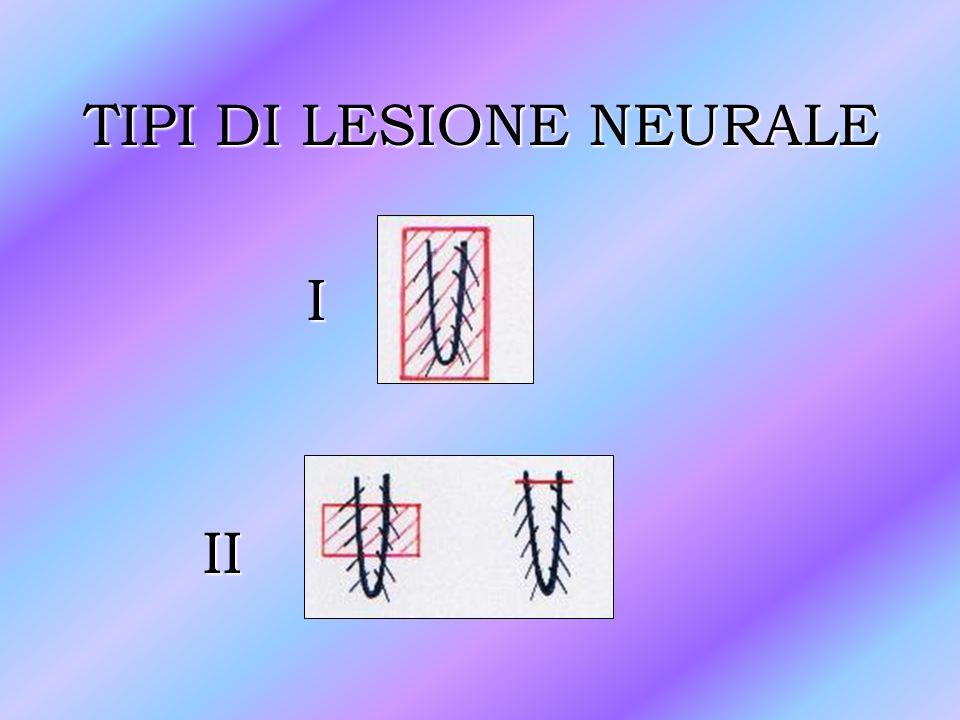 TIPI DI LESIONE NEURALE I II