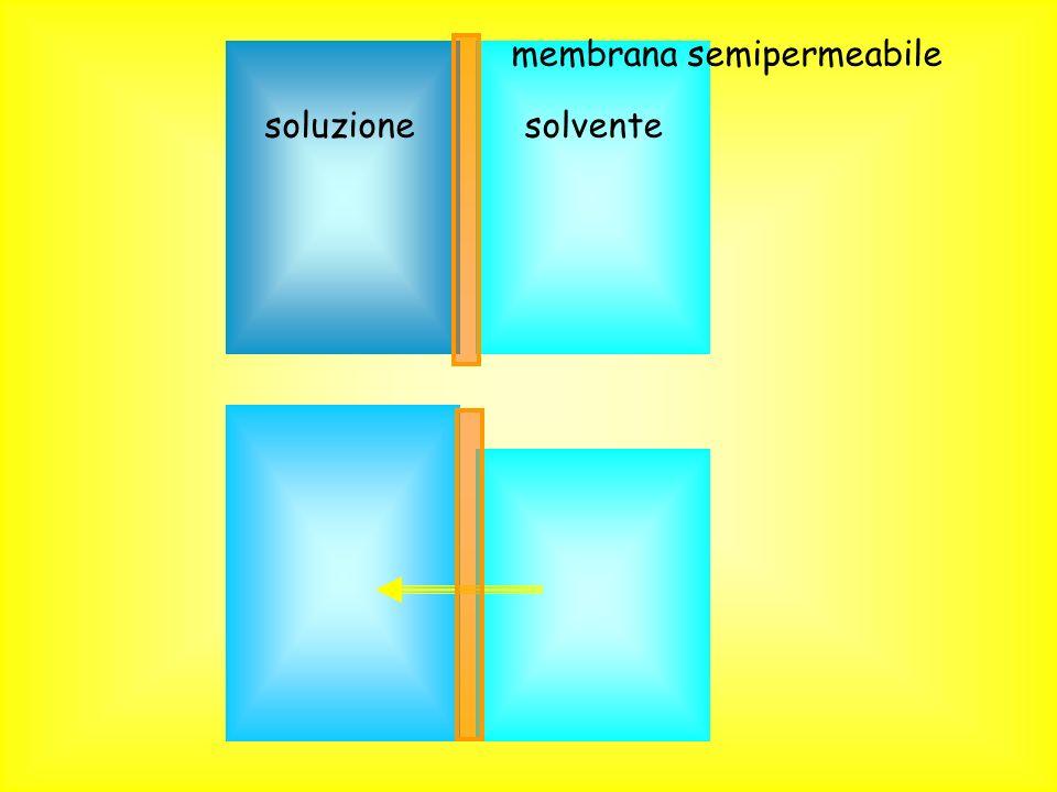 soluzionesolvente membrana semipermeabile