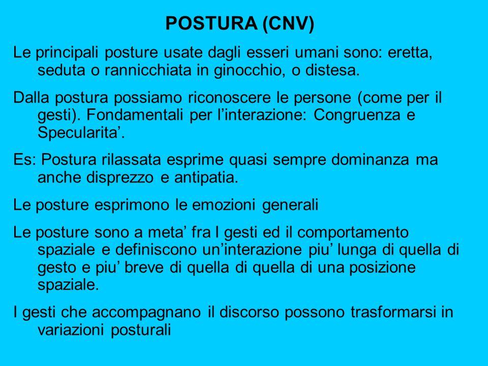 POSTURA (CNV) Le principali posture usate dagli esseri umani sono: eretta, seduta o rannicchiata in ginocchio, o distesa.