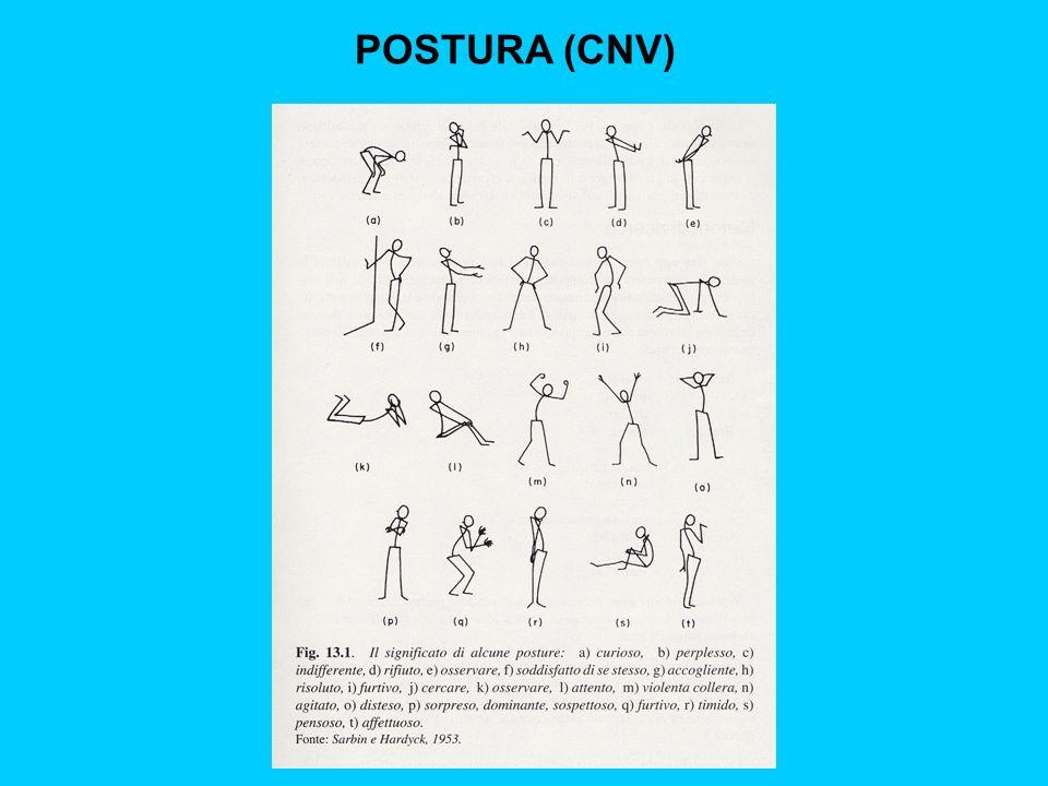 POSTURA (CNV)