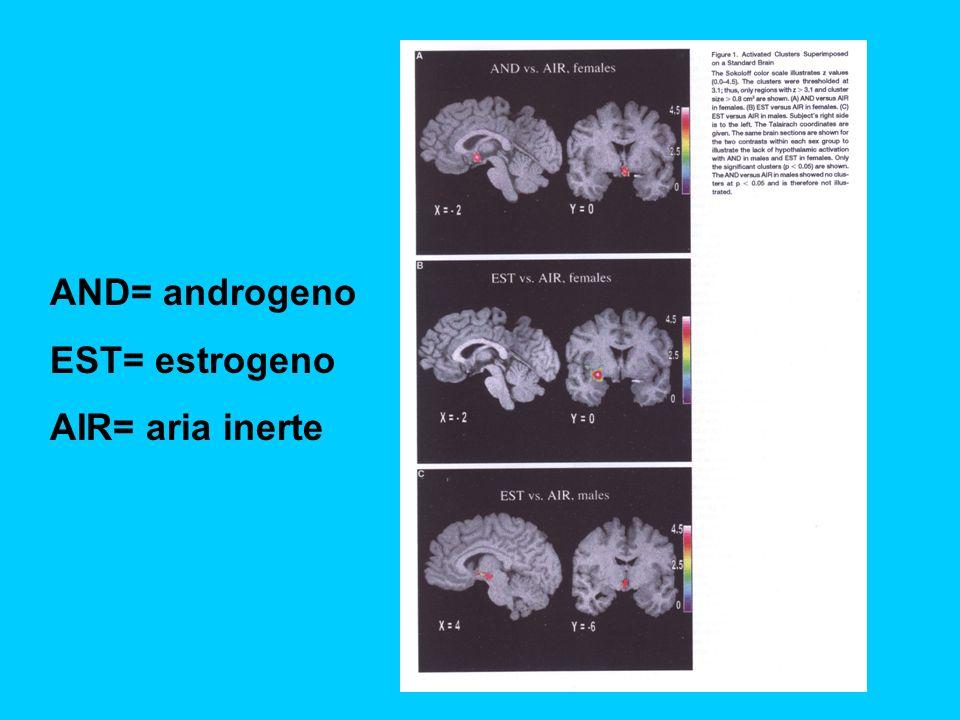 AND= androgeno EST= estrogeno AIR= aria inerte