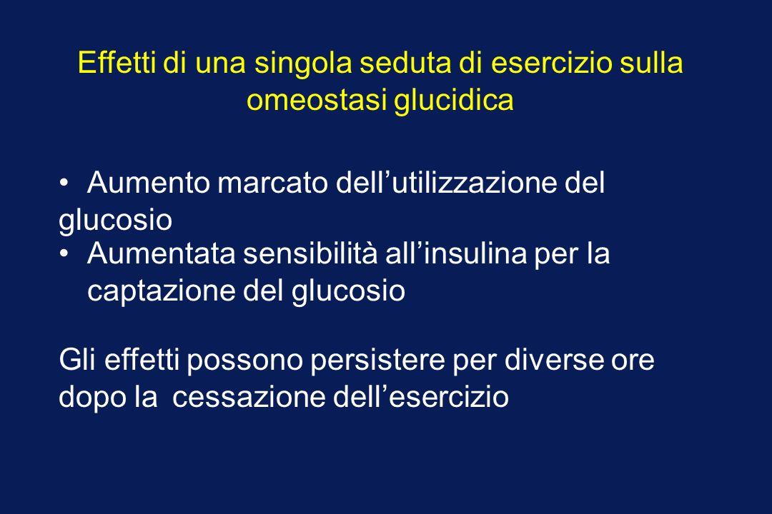 Effetti di una singola seduta di esercizio sulla omeostasi glucidica Aumento marcato dellutilizzazione del glucosio Aumentata sensibilità allinsulina