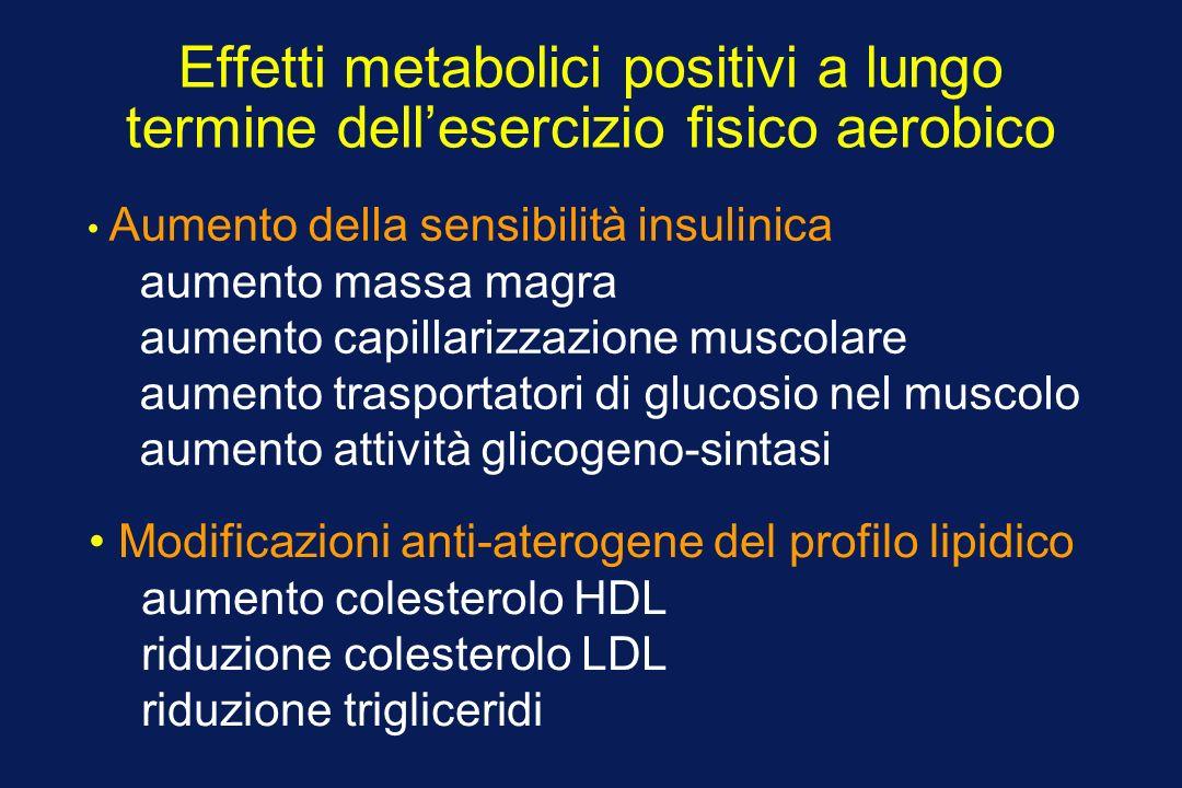 Effetti metabolici positivi a lungo termine dellesercizio fisico aerobico Aumento della sensibilità insulinica aumento massa magra aumento capillarizz