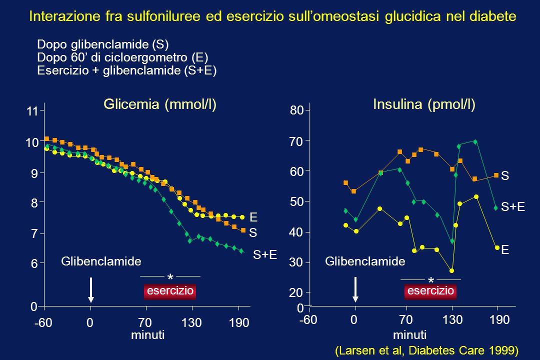 -60 0 70 130 190 0 6 7 9 10 11 8 esercizio Glibenclamide * S E 0 -60 0 70 130 190 30 40 60 70 80 20 50 esercizio * Glibenclamide S+E S+E E S Glicemia