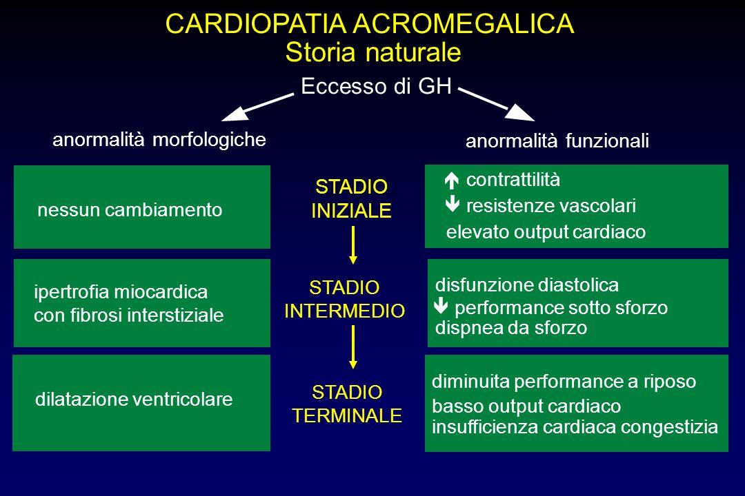 CARDIOPATIA ACROMEGALICA Patogenesi dell'ipertrofia Azione diretta GH/IGF-I Sovraccarico di volume aumento della volemia volume eritrociti Eventuale s