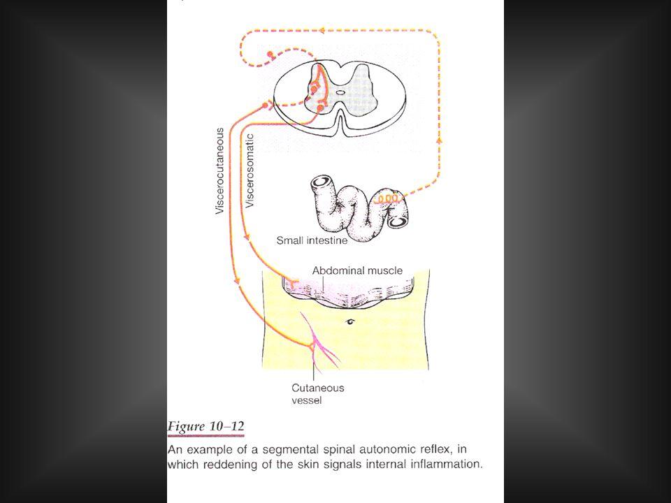ALTERAZIONI DELLA PERCEZIONE DOLORIFICA Iperalgesia: stimolazioni non dolorifiche provocano dolore (si può accompagnare ad arrossamento e contrattura dei muscoli).