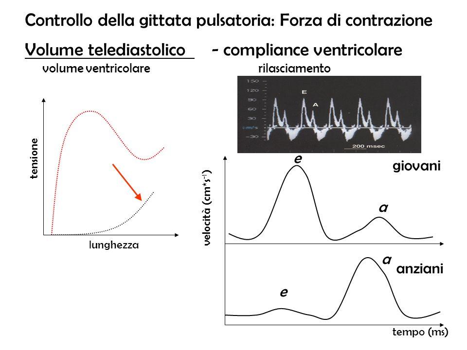 Controllo della gittata pulsatoria: Forza di contrazione Volume telediastolico - compliance ventricolare volume ventricolarerilasciamento e e a a temp